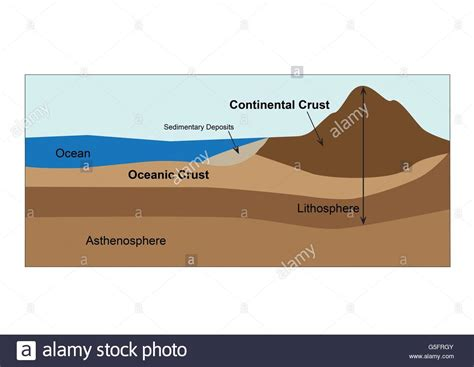 diagram of earths crust and mantle stock photo royalty