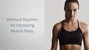 Bodybuilding Online Course Lesson 2 - Workout Routines For Increasing Muscle Mass