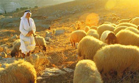 senhor   meu pastor nada  faltara blog dos