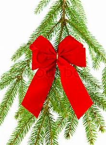 Branch of christmas tree with red ribbon christmas and new