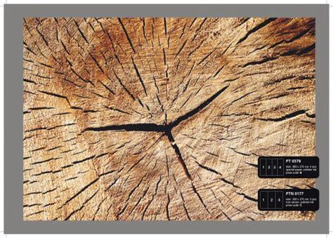 Ikea Tisch Querschnitt by Wood Wald B 228 Ume Baumstamm Querschnitt Natur Holz 360 X 270