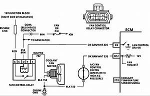 Camaro 1987 Cooling Fan Wiring Diagram