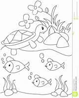 Coloring Fish Pages Turtle Springtrap Pond Fnaf Drawing Lake Spring Printable Useful Illustration Getdrawings Print sketch template