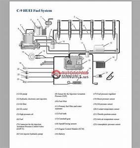 Caterpillar C9 Huei Fuel System