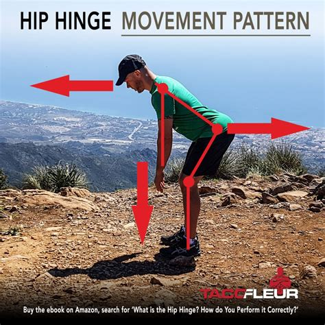 hinge hip movement exercise pattern joint kettlebell definition squat vs sport swing joints hips cavemantraining down which hinges function describe