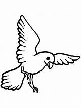 Canary Coloring Pages Birds Printable Recommended Colors Mycoloring sketch template