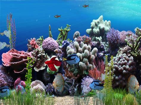 fond ecran aquarium anime aw mill aquarium animated wallpaper screenshot windows 8 downloads