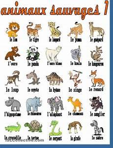 Le Cahier De FLE Vocabulaire