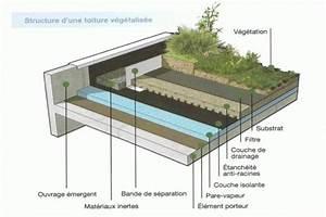 Toiture Terrasse Accessible : coupe tanch it toiture v g talis e montussan ~ Dode.kayakingforconservation.com Idées de Décoration