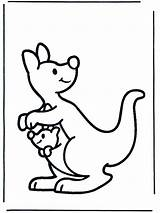 Kangaroo Coloring Pages Animal Coloringpages1001 Printable Colouring Colour Sheets Australia sketch template
