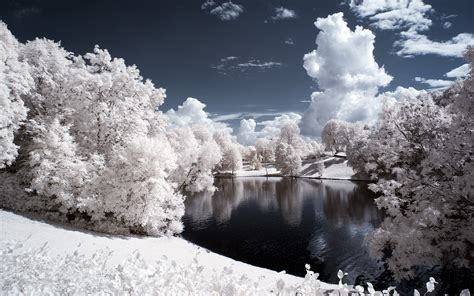 Nature Winter Snow Trees Water Pond Wallpapers Hd