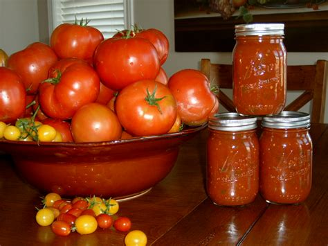 canned tomatoes canned tomato salsa recipe dishmaps