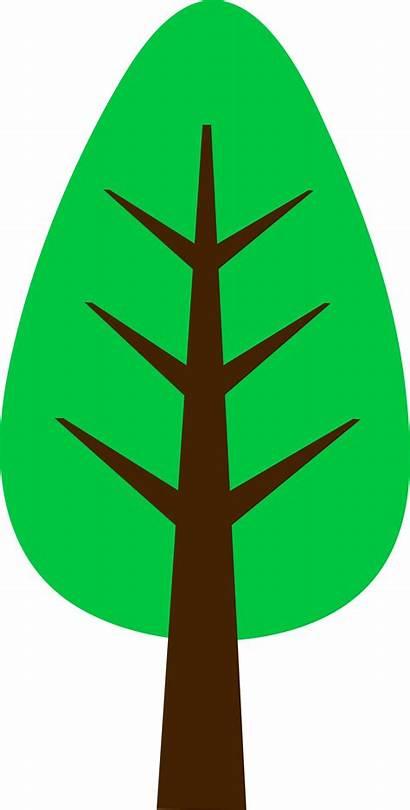 Tree Simple Cartoon Clip Clipart Pine Spring