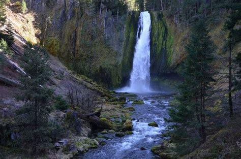 oregon river rogue umpqua redwoods trail forest national siskiyou waterfalls southern oregonlive falls north along hiking winchuck