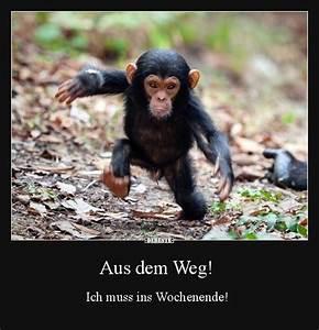 Lustiges Bild Wochenende : besten bilder videos und spr che und es kommen t glich neue lustige facebook bilder auf debeste ~ Frokenaadalensverden.com Haus und Dekorationen