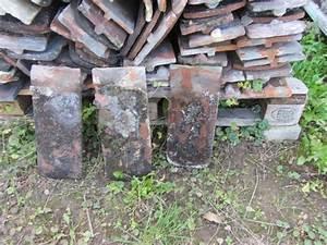 Gebrauchte Dachziegel Verkaufen : deko alte bieberschwanz ziegel zu verkaufen in gaggenau ~ Michelbontemps.com Haus und Dekorationen