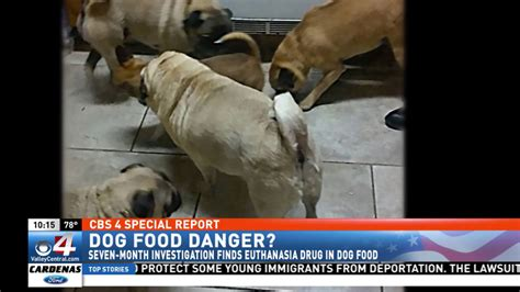 month investigation finds euthanasia drug  dog