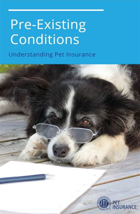 Instead of having to pay for veterinary costs out of pocket, pet assure. What are pre-existing conditions?   Pet insurance, Pets, Insurance