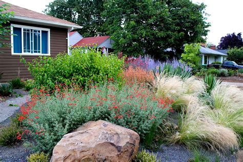 drought tolerant landscapes drought tolerant garden with gravel creative landscapes inc