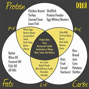 Does Too Much Protein Hurt Your Kidneys