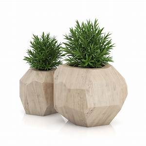 Plants Remarkable Green Round Indoor Planters For Trees