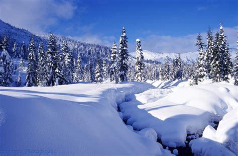 Winter Landscape Desktop Wallpaper Snow Scene At Hemlock Valley Photo Wp01637