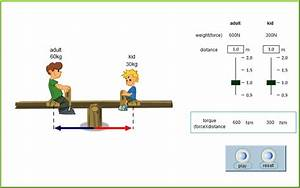 Rotational Equilibrium Simulation