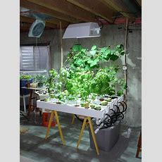 177 Best Images About Hydroponic Gardening On Pinterest