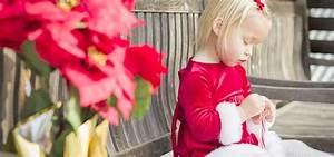 Kirschlorbeer Giftig Für Kinder : weihnachtsstern wie giftig die giftpflanze ist kidsgo ~ Frokenaadalensverden.com Haus und Dekorationen