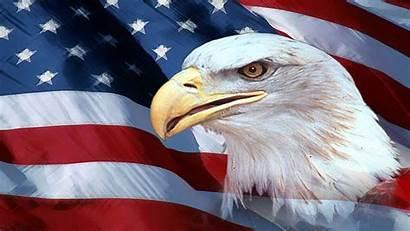 Eagle 4k American Desktop Wallpapers Yodobi
