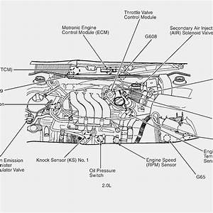 2000 Vw Eurovan Engine Diagram