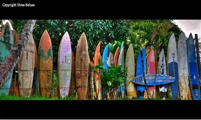 Wallpapers Surfboard Hawaii Boards Surfboards Surfing 1600