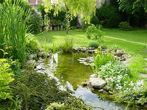 le bassin de jardin de jean yves With photos de bassins de jardin