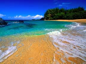 kauai photographers 30 days to hawaii or kauai yu live yu learn