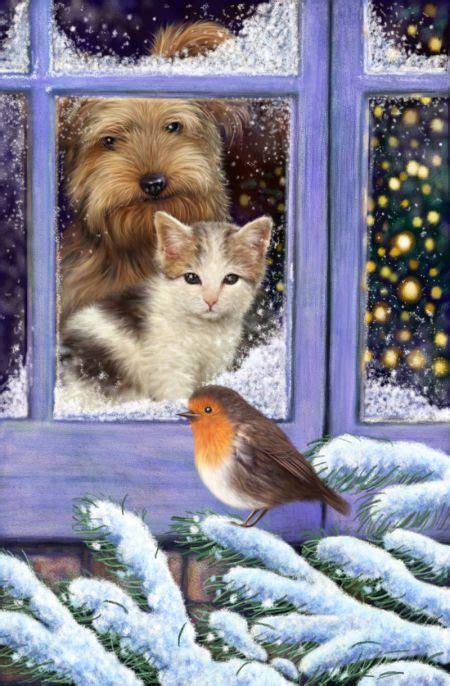 scott wilson cat dog window robin cat art