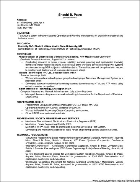Curriculum Vitae Work Experience Format by Sle Resume For It Professional Experience Free