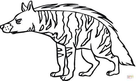 Striped Hyena 12 Coloring Page