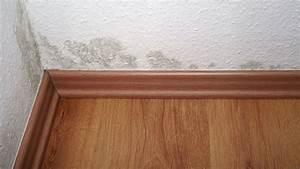 Schimmel In Wohnung Was Tun : schimmel in der wohnung das m ssen sie tun der spiegel ~ Watch28wear.com Haus und Dekorationen