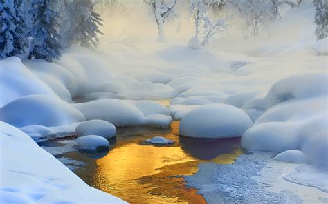 nature, Landscape, Creeks, Sunrise, Forest, Snow, Frost ...
