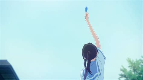 liz   blue bird  backdrops