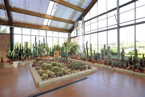 viridea pavia orari piante grasse viridea