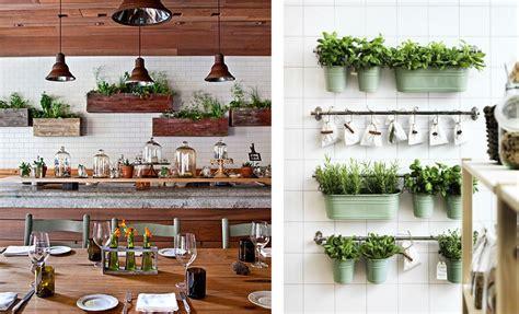 plantes aromatiques cuisine décoration cuisine plantes aromatiques