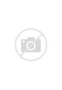 The Joker Comic Book I...
