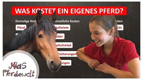 wie teuer ist ein pferd wie teuer ist eigentlich reiten