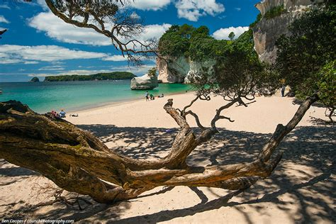 Cathedral Cove, New Zealand photos