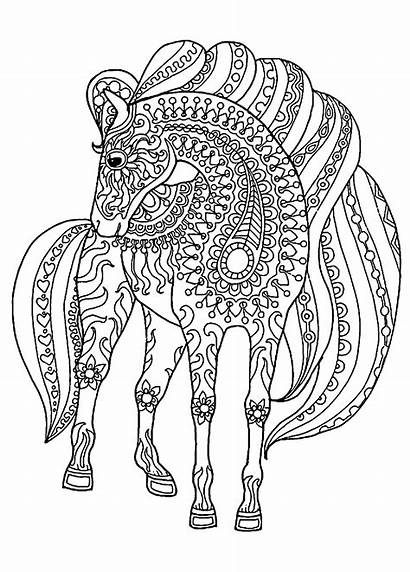 Coloring Horse Colouring Cheval Coloriage Chevaux Mandala