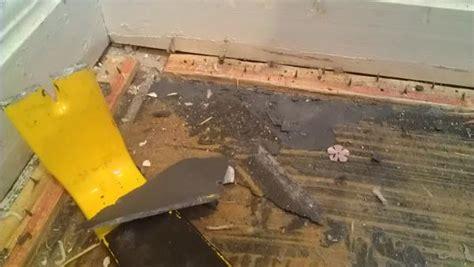replacing carpet  hardwood floor suggestions