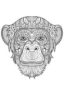 monkeys coloring pages  adults