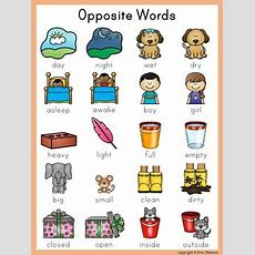 Writing Center Word List  Opposite Words By Erin Thomson's Primary Printables