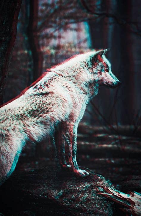 wolf iphone wallpaper wolf wallpaper pack by prolite on deviantart